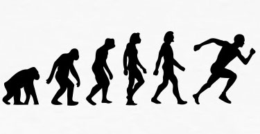 evolution of exercise