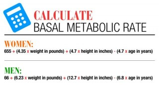 Get To Know Your Metabolic Rate